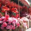 神戸南京町で「春節祭」があるよ