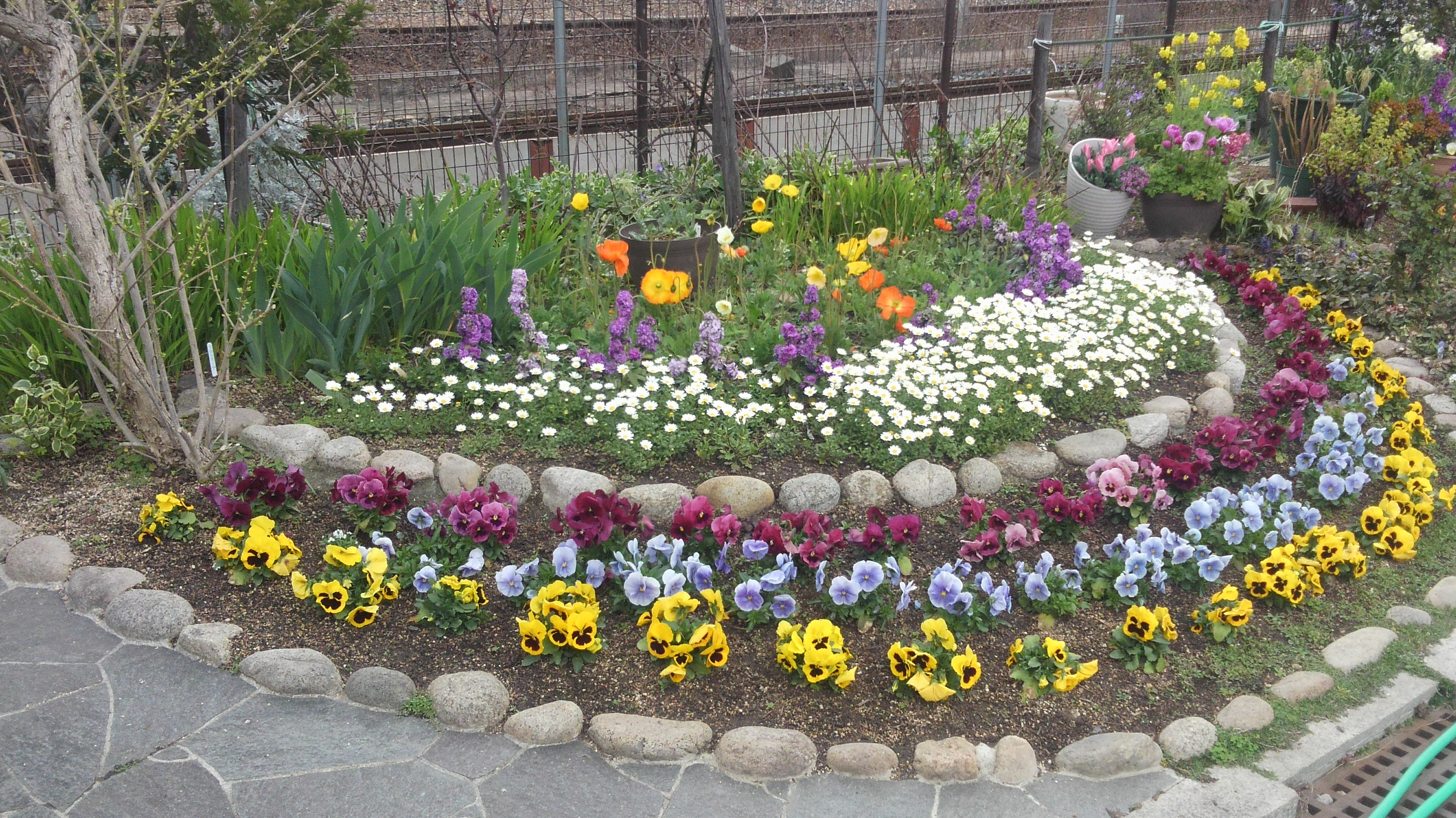 神戸・JR住吉駅沿いは春がいっぱい