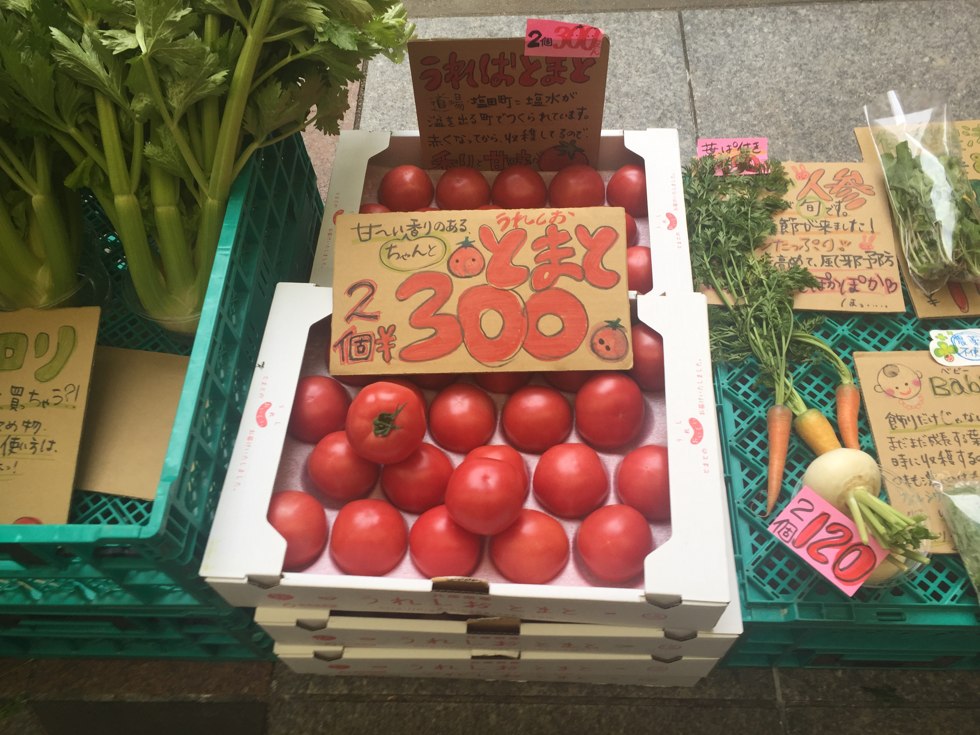 神戸・甲南本通商店街の空地(ケルン横)で毎週木曜日に神戸の新鮮野菜が販売されているよ【※写真レポあり】