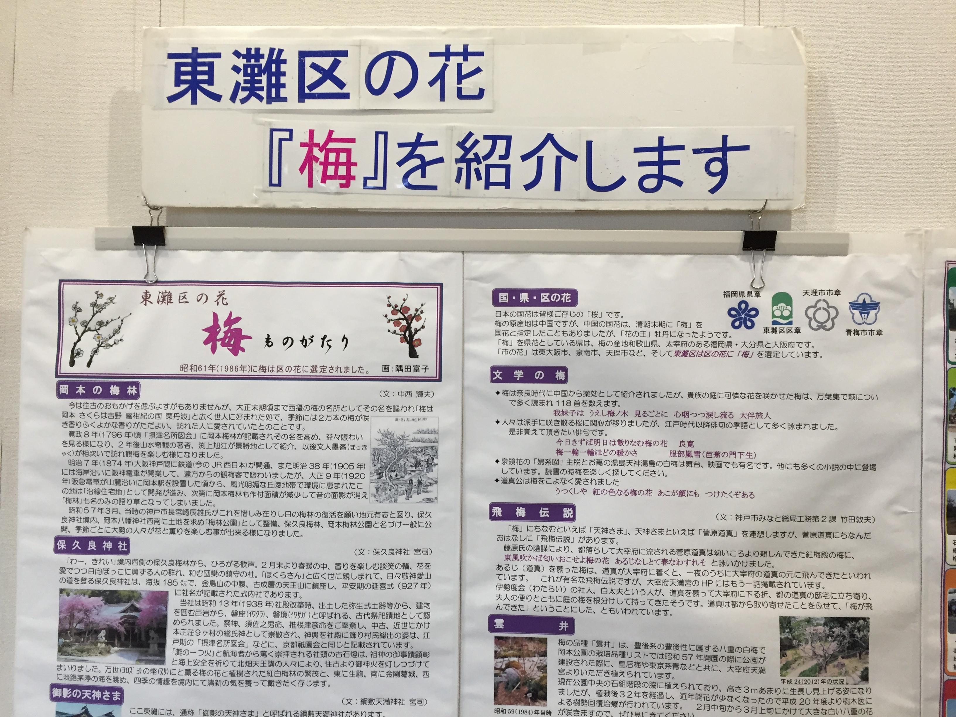神戸市立東灘区民センターで梅の写真展 (無料)がただ今開催中!【写真付案内】