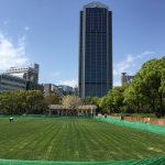 「東遊園地芝生広場の全面開放」が2017年4月21日(金)よりはじまるよ@神戸市役所前東遊園地【※写真で見る芝生の様子】
