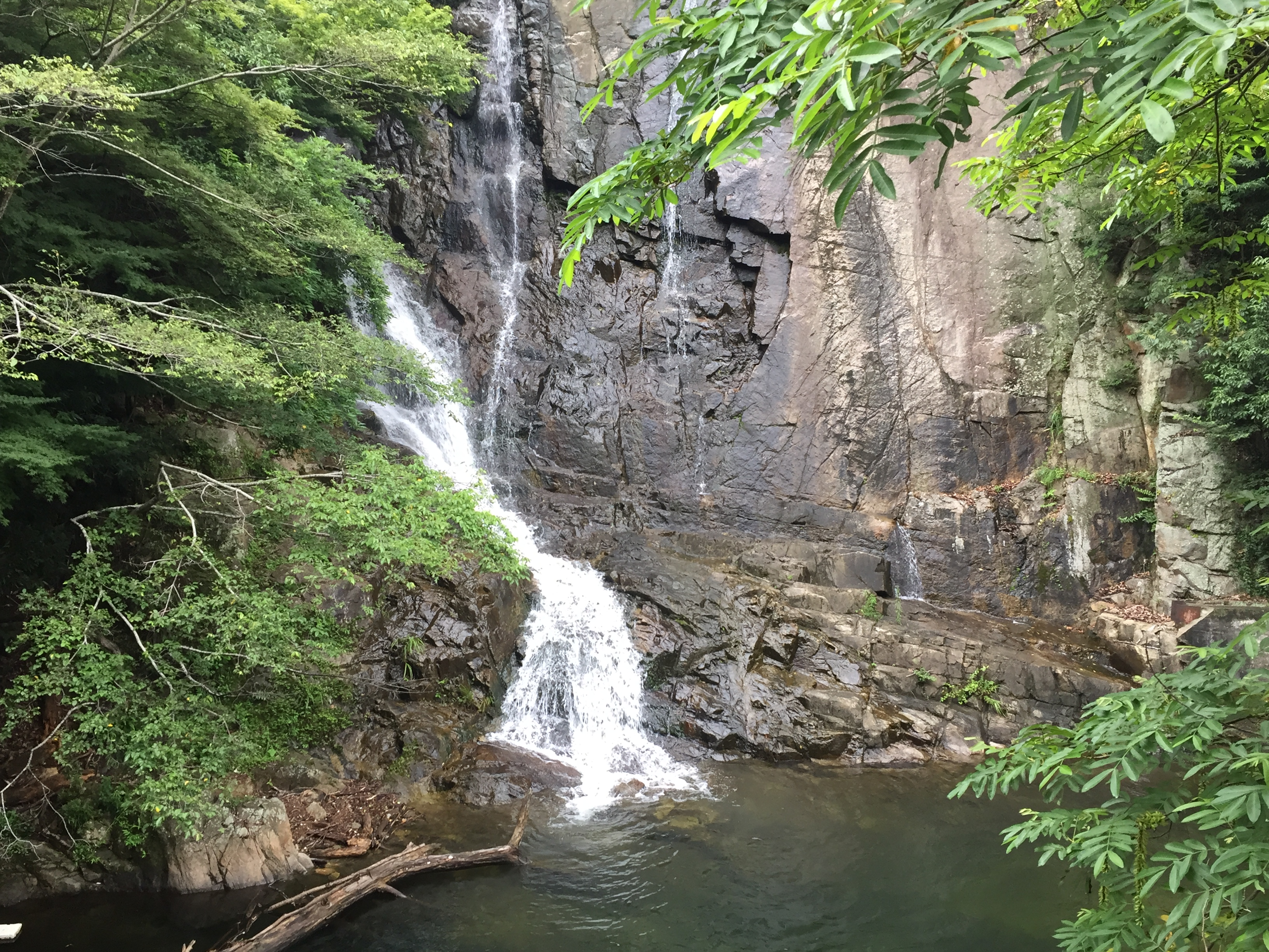 新神戸にある「布引の滝」と「布引貯水池」はハイキング散策にピッタリだよ【※写真付レポ】 #布引の滝