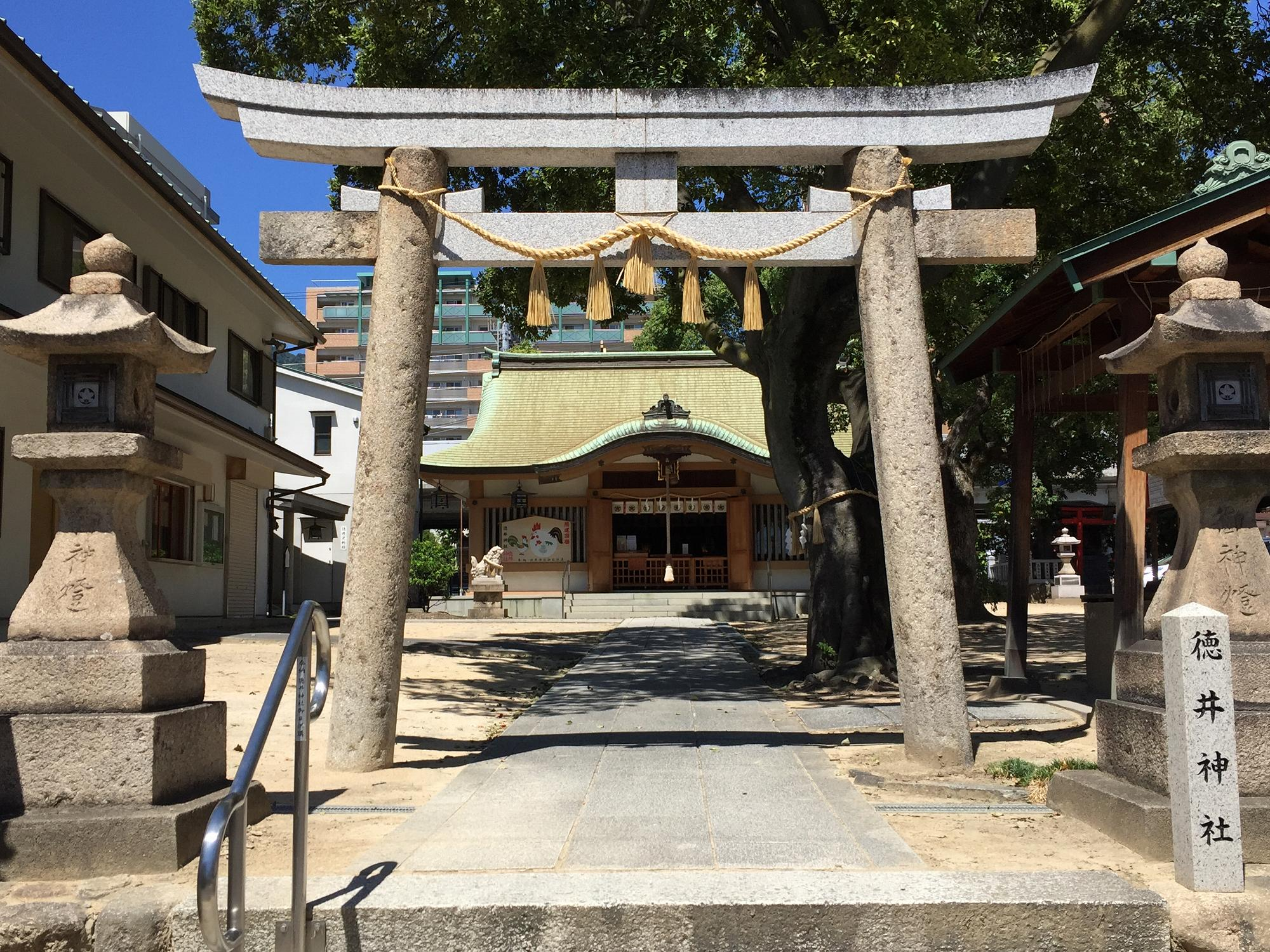 神戸・灘にある「徳井神社」へお参りしてきた! #神社めぐり #開運散策 #灘区