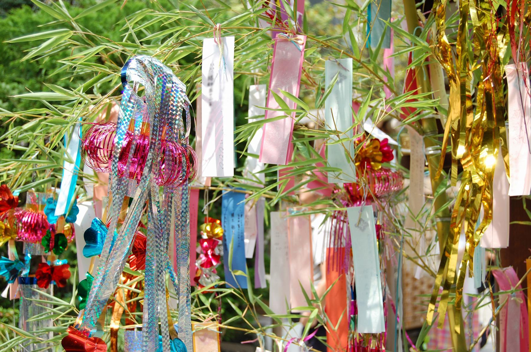 神戸・甲南本通商店街で「2018 甲南にぎわい七夕フェスタ」が6/30~7/8まで開催、七夕飾りを楽しもう! #甲南本通商店街 #七夕 #東灘区