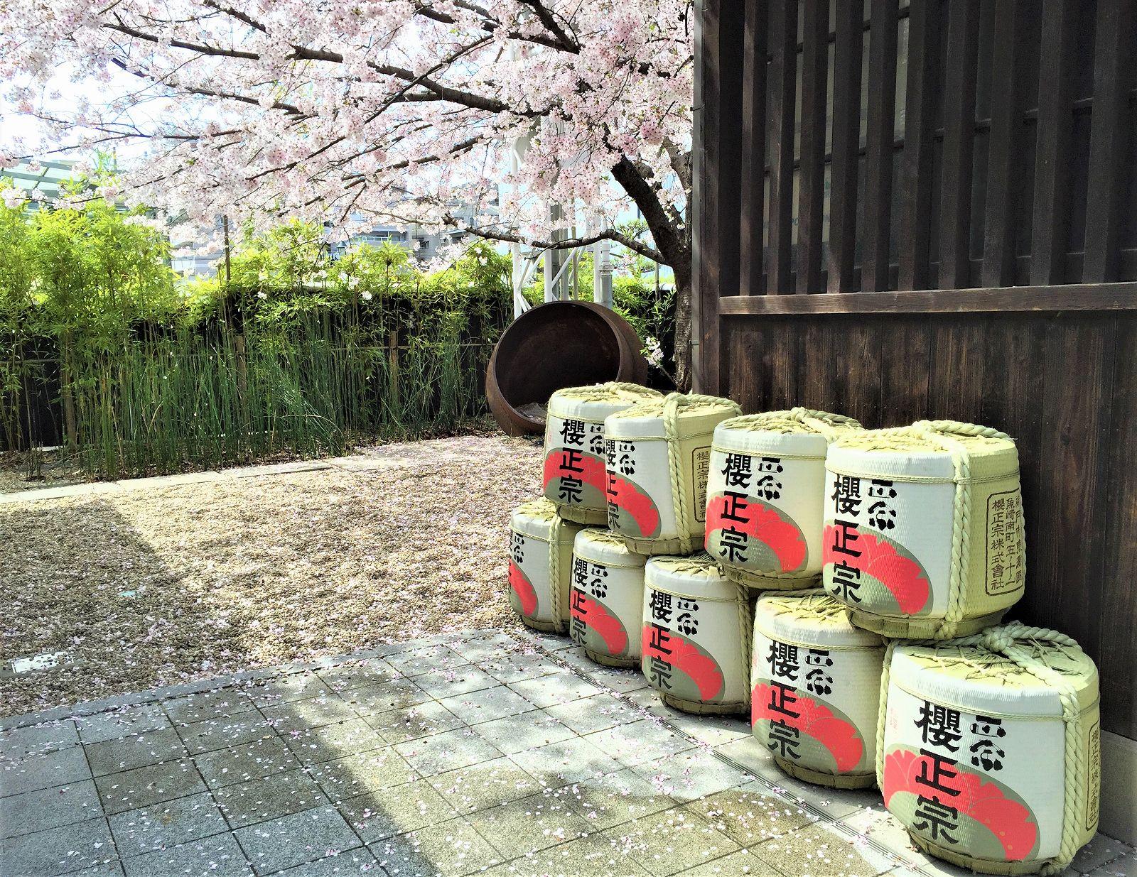 神戸・魚崎の「櫻正宗」で『第16回「蔵開き」』が11/3(土)に開催されるよ! #櫻正宗 #蔵開き #酒蔵 #灘五郷 #日本酒
