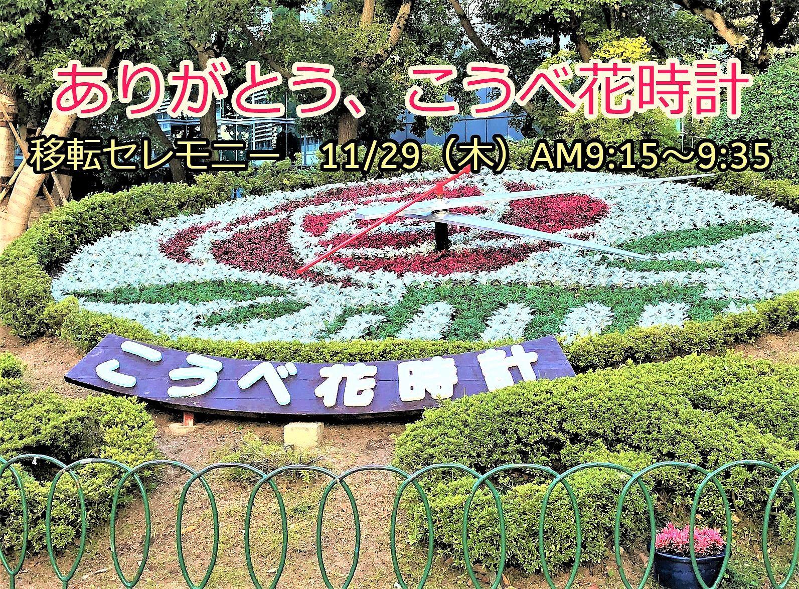 ありがとう、こうべ花時計「移転セレモニー」の開催 11月29日(木) #こうべ花時計 #神戸観光 #神戸市 #花時計移転