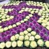 神戸市役所周辺に「亥」と「イノシシ」の花図柄が登場!ぜひ見つけてね♪ #こうべ花時