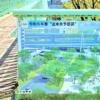 神戸・三宮と新港地区の未来を架ける橋へ!「税関前歩道橋」が生まれ変わるみたい! #