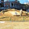 【こうべ花時計】東遊園地・噴水広場への移転が進み、花時計の形が見えてきた! #こう