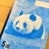 「神戸ノート」に王子動物園の「ジャイアントパンダ」&「ライオン」のついた新商品が
