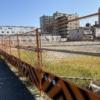 東灘・商船大学線沿いに広い更地が広がってる!新たなお店や工場ができるのかな? #東