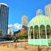 神戸・東遊園地に神戸ルミナリエ作品「カッサアルモニカ」の設置&「希望のアーチ」が