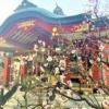 東灘・御影にある「綱敷天満神社」で梅花散策を楽しんでみた! #東灘区 #綱敷天満神社